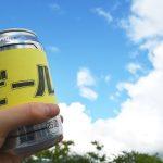【実験】ウールラグにビールをこぼした時の対処法