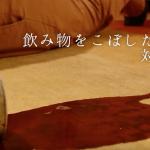 【ハグみじゅうたん展だより】2017年秋のハグみじゅうたん展 活用方法その3