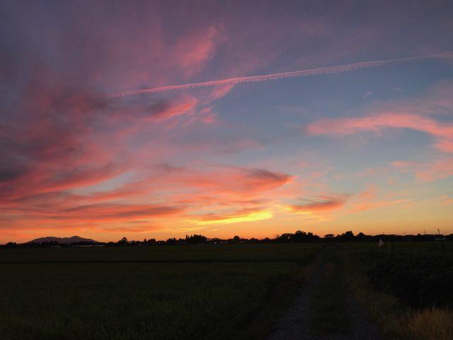 ハグみじゅうたんのデザインにも通じる新潟の美しい夕日
