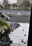 冬はウールラグの季節!楽しみ方・気を付けること