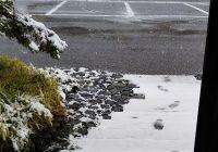 新潟にも初雪