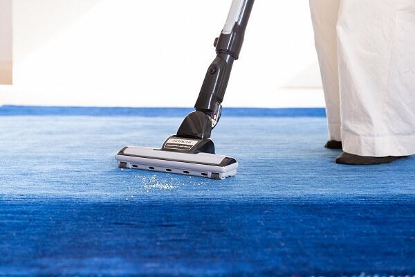 掃除機 絨毯